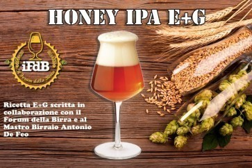 KIT BIRRA E+G HONEY IPA (20 LT.)