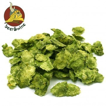 LUPPOLO CHINOOK (250 GR.) IN CONI - CROP 2019