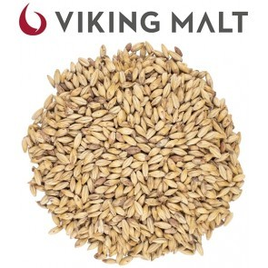 MALTO IN GRANI VIKING COOKIE (BISCUIT)  5 KG.