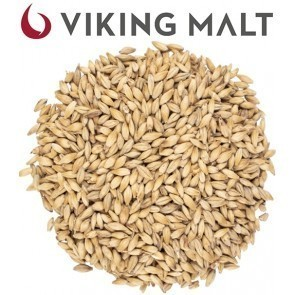 MALTO IN GRANI VIKING MONACO MUNICH LIGHT BIOLOGICO ( 5 KG.)